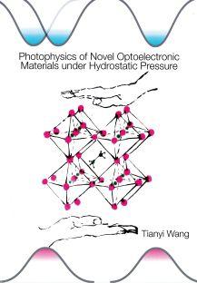 PhD thesis T. Wang