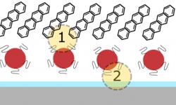 scheme Quantum Dot - Singlet fission